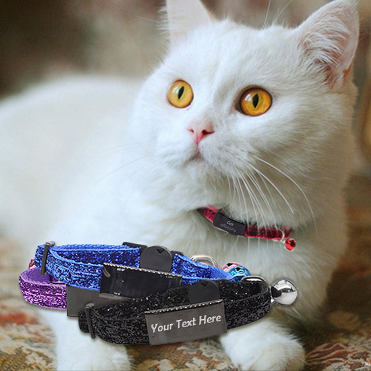 Custom Cat Collars with Name Tag